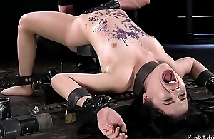 Asian babe in metal device anal toyed